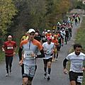 13212857586_middle_100_2011_06
