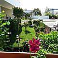 Des photos du jardin