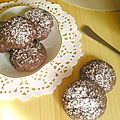 Biscuits sablés choco-coco