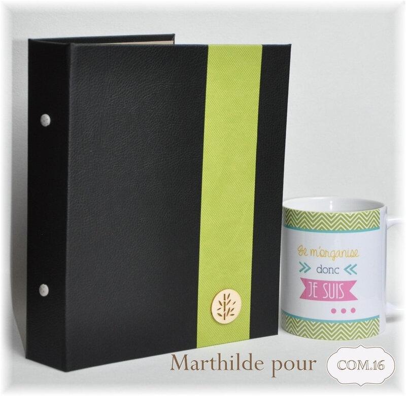 marthilde_pour_com16_carnetmedecins12_gaspard