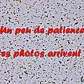 Z-9836 Karyole Feest Hondschoote 7 sept. 2014