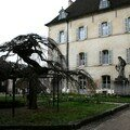 Beaune hospices cours2