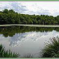Lac Azur 25041516