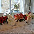Des amaryllis et des invités ...