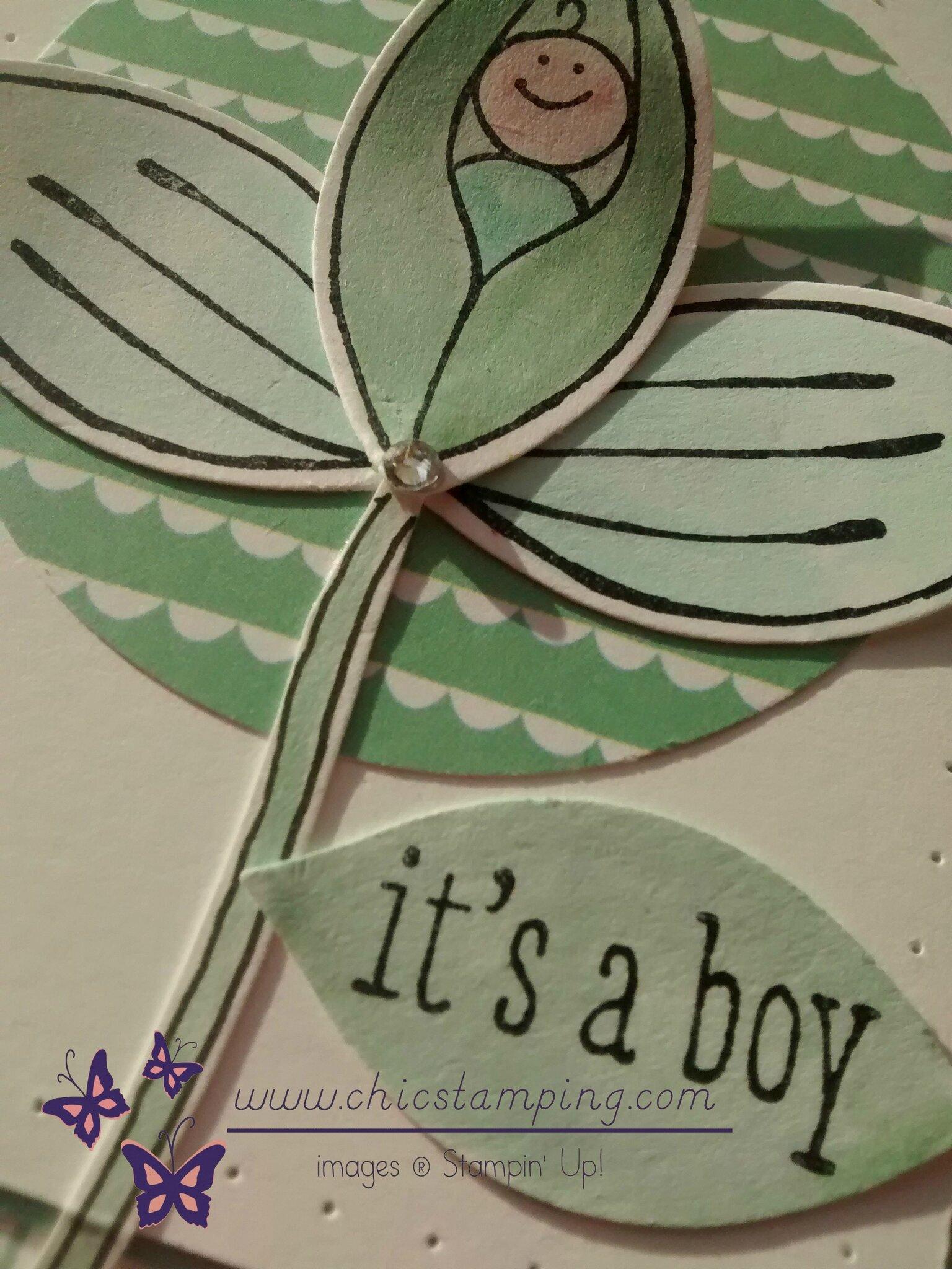 It's a boy- Friends & flowers 1