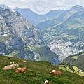 Retour en Suisse pour faire le plein de randonnées, 3ème partie