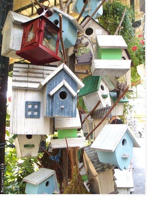 Maisons d'oiseaux, Marché aux Fleurs