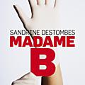 Polar : la peu fréquentable et pourtant attachante Madame B de <b>Sandrine</b> Destombes