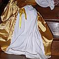 2012 - robe de soleil de Peau d'Ane Citronille 8 nas