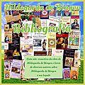 BIBLIOGRAFIA DE HILDEGARDA DE BINGEN (livros utilizados como referência neste blog)