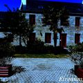 Penmarc'h Goéland masqué 22 au 24 mai 2010 1044