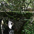cascade d'angon (7)