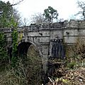 Overtoun bridge : le pont des chiens suicidés.