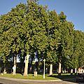 Grand-Hornu - Place Verte