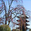 Kobo-san : le marché aux puces au temple toji.