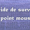 Guide de survie au point mousse