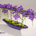 Orchidées vanda sur base mauve: ovale