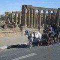 Egypt2007 604