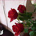 bouquet Amour 5
