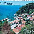 Pradet - pin de Galle datée 2003