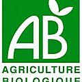 Consommer bio ou non, comment faire le bon choix ?