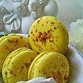 Macaron pistache2