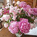 pivoines et roses 4