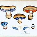 p.109-113