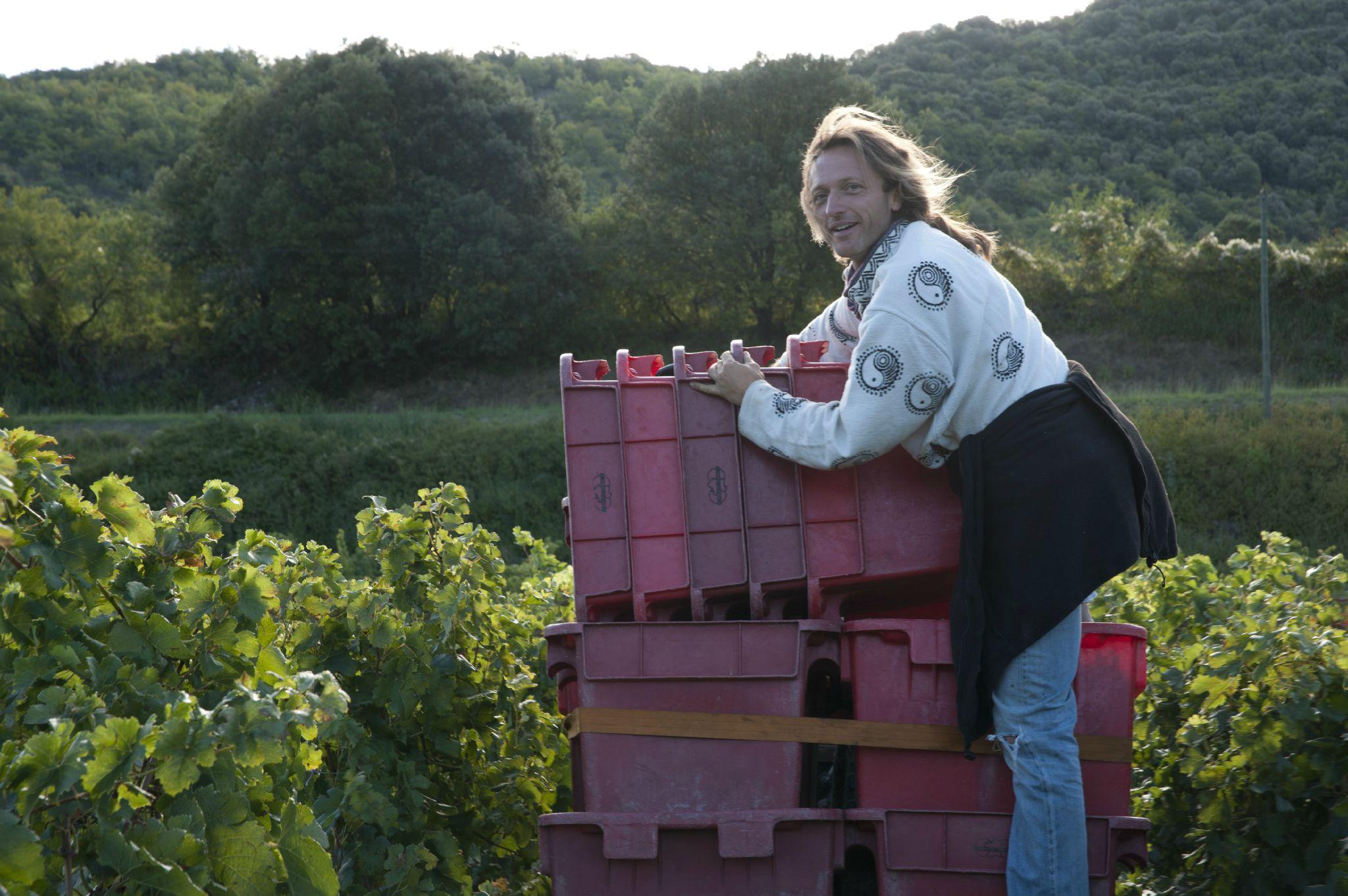 Vendanges 2012 Anne Bouillot (4)
