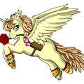 Les poneys de Glacinia