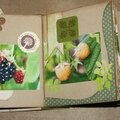 Pages 5 & 6