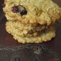 Cookies au raisin et canneberge séchés