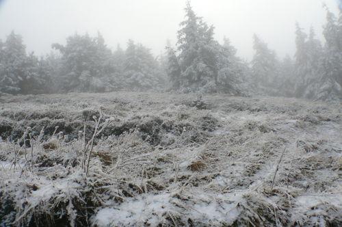 2008 11 20 Photo prise au Mont Mézenc (6)