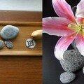 Des fleurs et des galets