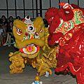 <b>Nouvel</b> <b>An</b> Chinois - <b>Nouvel</b> <b>An</b> Lunaire - Fête du Printemps
