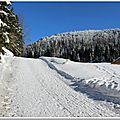 Les <b>Vosges</b> sous la neige