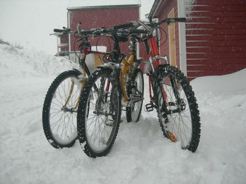 de g. à d., Myrtille, Moi et José 's bikes