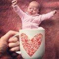 ╰☽ 65# baby mugging ou pet mugging...la nouvelle mode du web