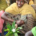 photos ethiopiedjibouti 220