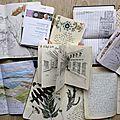 Carnet de voyage -images et tips-