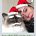 Joyeux noël 2015 !