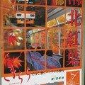 Affiche pour l'Eiden panoramique 900 en automne