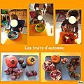 Dégustation de fruits d'automne ( 2ème partie)