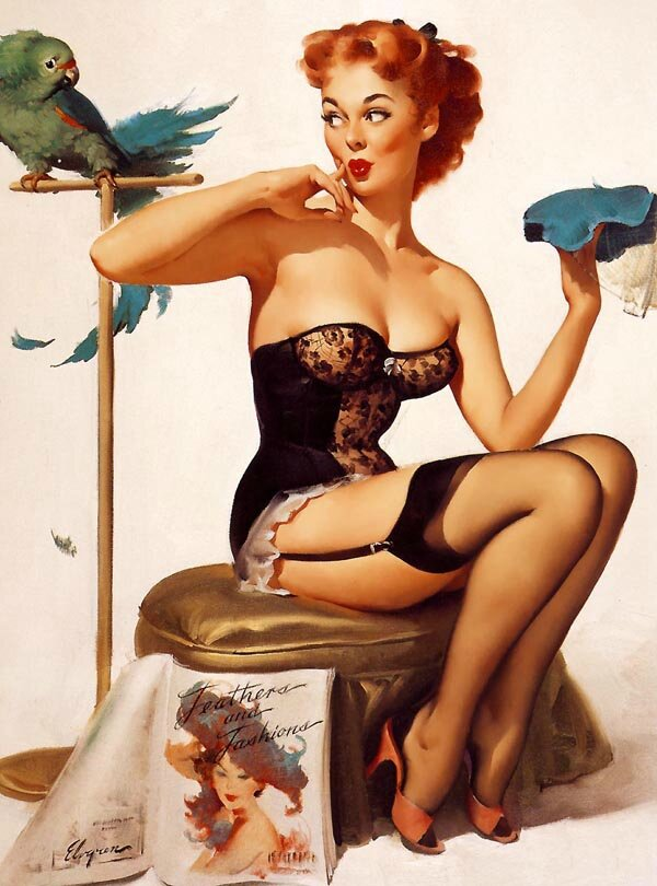 pin up oiseau