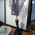 Gorgone sur socle en bois noir