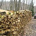 Association forestière de la vallée de Villé