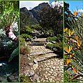 2017-10-09 jardin botanique9
