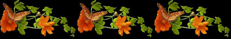 barre separation papillon fleur