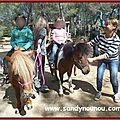 poneys-av2014