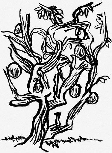 Arbre [3]